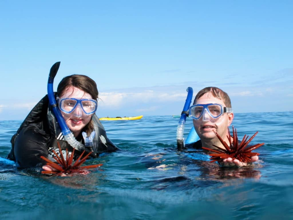 We never pack snorkel gear when we travel to Hawaii because it's so readily available from resorts and tour companies.